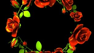 Red Roses Frame On Black Text Spaceのイラスト素材 [FYI03426811]