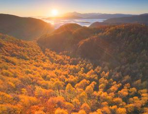 紅葉のカラマツ林と朝日と蓼科山と八ケ岳遠望の写真素材 [FYI03426865]