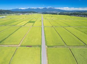 五郎兵衛米の田園と道路と浅間山遠望の写真素材 [FYI03426902]