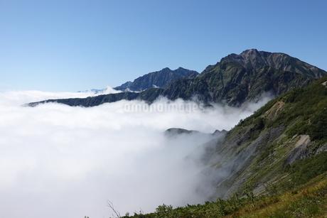 五竜岳と雲海の写真素材 [FYI03426906]