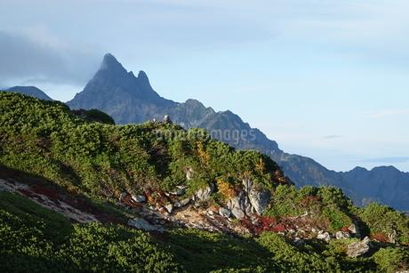 常念山脈縦走路から見た槍ヶ岳の写真素材 [FYI03426912]
