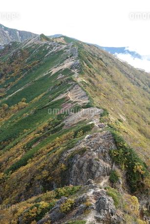 北アルプス(常念山脈)縦走路の写真素材 [FYI03426913]