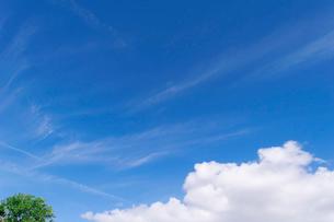 青空 雲の写真素材 [FYI03427069]