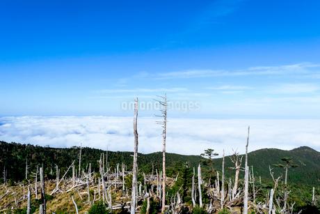 弥山 雲海の写真素材 [FYI03427070]