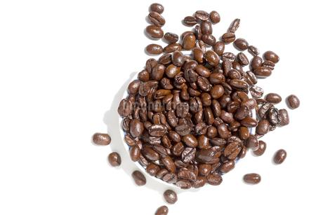コーヒー豆 アラビカ種 焙煎の写真素材 [FYI03427082]