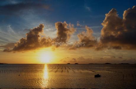 夕日の写真素材 [FYI03427100]