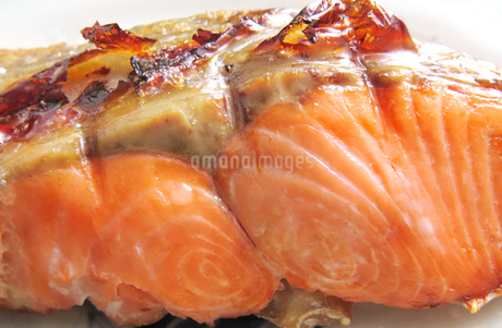 焼き鮭 シャケ さけの写真素材 [FYI03427133]