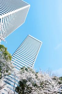 春の大阪ビジネスパークの写真素材 [FYI03427246]