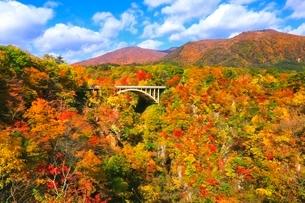 鳴子峡の紅葉の写真素材 [FYI03427254]