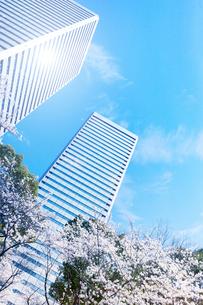 春の大阪ビジネスパークの写真素材 [FYI03427300]