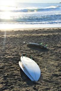 ビーチに置かれたサーフボードの写真素材 [FYI03427531]
