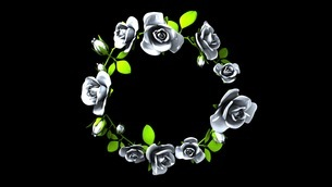 White Roses Frame On Black Text Spaceのイラスト素材 [FYI03427584]