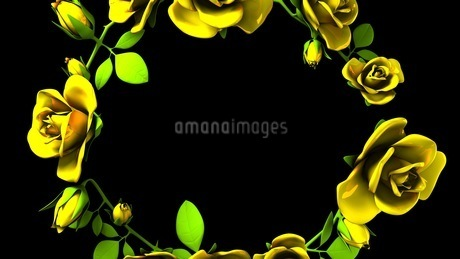 Yellow Roses Frame On Black Text Spaceのイラスト素材 [FYI03427592]