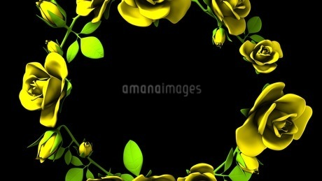 Yellow Roses Frame On Black Text Spaceのイラスト素材 [FYI03427594]