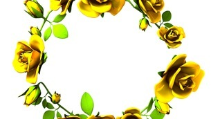Yellow Roses Frame On White Text Spaceのイラスト素材 [FYI03427596]