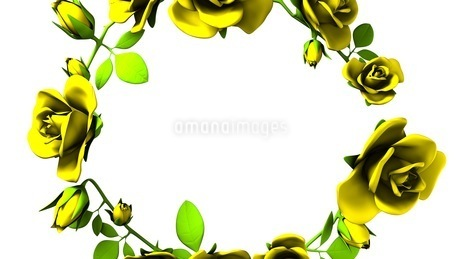 Yellow Roses Frame On White Text Spaceのイラスト素材 [FYI03427598]