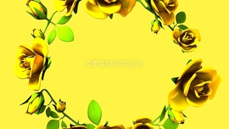 Yellow Roses Frame On yellow Text Spaceのイラスト素材 [FYI03427600]