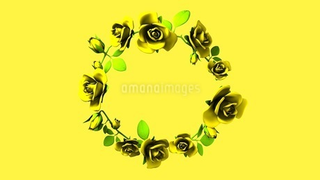 Yellow Roses Frame On yellow Text Spaceのイラスト素材 [FYI03427601]