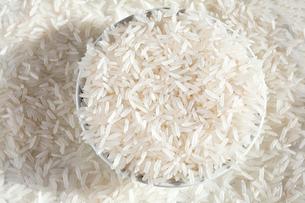 ジャスミンライス 香り米の写真素材 [FYI03427603]