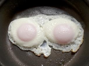 目玉焼き 朝食 サニーサイドアップの写真素材 [FYI03427620]