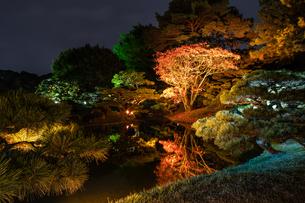 栗林公園の秋の夜のライトアップの写真素材 [FYI03427754]