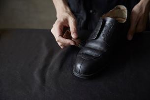 ブラシで靴にクリームを塗る靴職人の手元の写真素材 [FYI03428144]