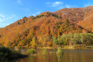 秋の奥只見湖の写真素材 [FYI03428508]