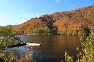 秋の奥只見湖の写真素材 [FYI03428510]