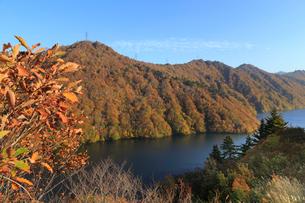 秋の奥只見湖の写真素材 [FYI03428512]
