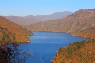 秋の奥只見湖の写真素材 [FYI03428522]