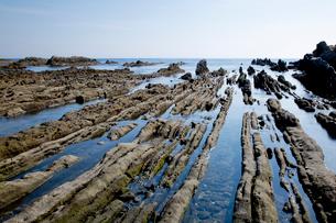 根本海岸干潮時の屏風岩の写真素材 [FYI03428610]