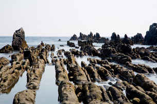 根本海岸干潮時の屏風岩の写真素材 [FYI03428612]