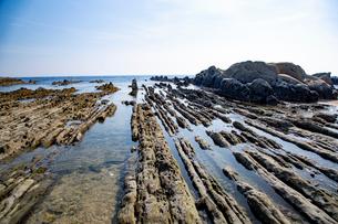 根本海岸干潮時の屏風岩の写真素材 [FYI03428722]