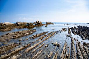 根本海岸干潮時の屏風岩の写真素材 [FYI03428730]