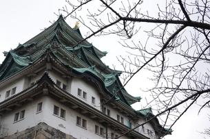 名古屋城の写真素材 [FYI03428861]