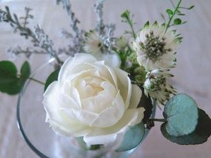 白いバラの花束の写真素材 [FYI03428884]