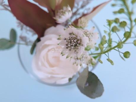 白い花のブーケの写真素材 [FYI03428885]