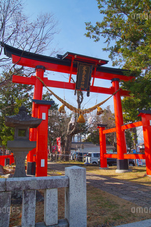 生島足島神社の写真素材 [FYI03428892]
