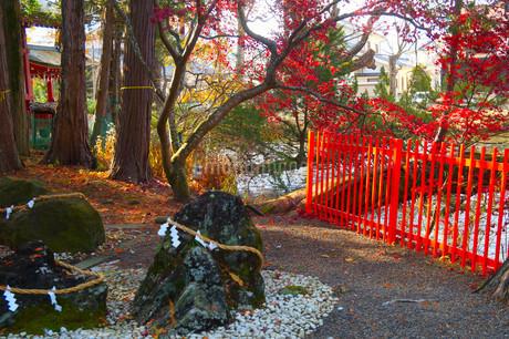 神社の周りの写真素材 [FYI03428899]