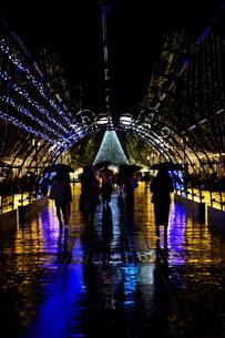 クリスマスのイルミネーションの下を傘を差して歩く人たちの写真素材 [FYI03429023]