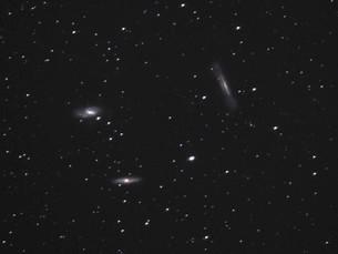 しし座トリオ銀河M65・M66・NGC3628の写真素材 [FYI03429140]