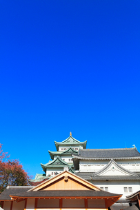名古屋城天守と本丸御殿の写真素材 [FYI03429320]