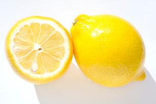 檸檬 レモンの写真素材 [FYI03429499]
