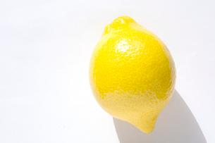 檸檬 レモンの写真素材 [FYI03429500]
