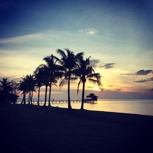 ビンタン島 サンセットの写真素材 [FYI03429542]