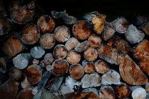薪の写真素材 [FYI03429614]