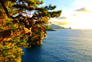 海の日没と夕日に染まる松の写真素材 [FYI03429858]