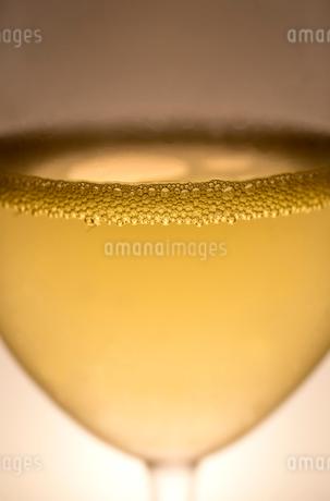 スパークリングワイン クリスマスの写真素材 [FYI03429980]