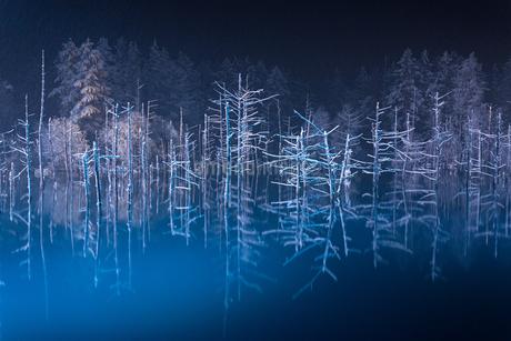 青い池のライトアップの写真素材 [FYI03430051]