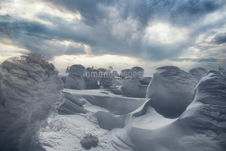 蔵王 樹氷群の写真素材 [FYI03430254]